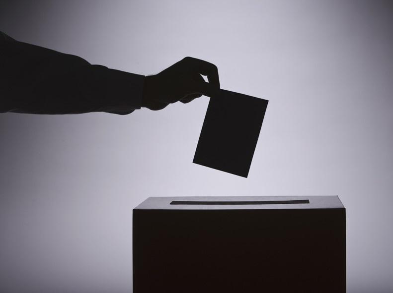 Идет голосование