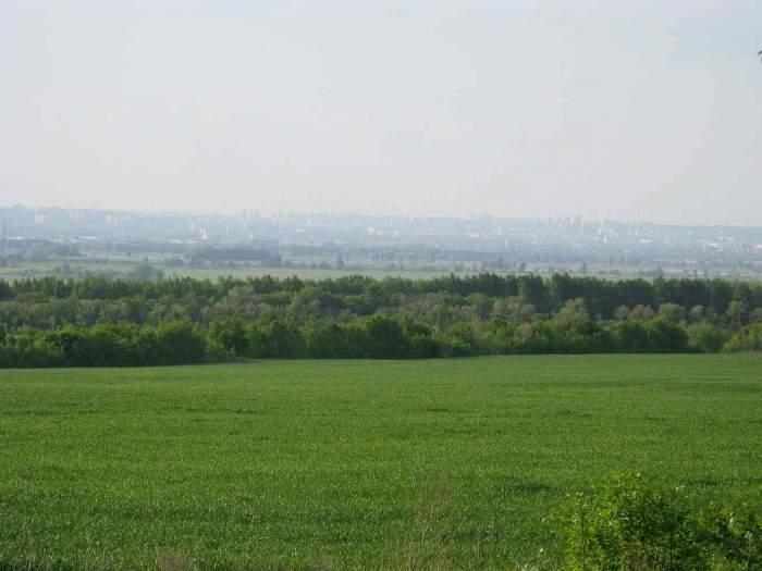 Одесский суд велел николаевскому «фермеру» вернуть землю туда, где взял