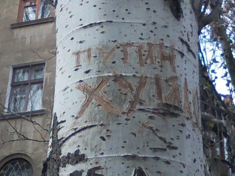 Политический вандализм в Николаеве. Деревья стали жертвами Путина