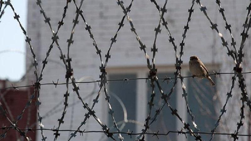 На Николаевщине осужденный вылез в окно колонии, повредив оконные решетки. За передачкой с наркотиками