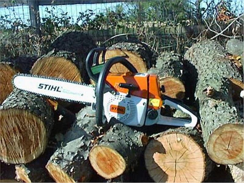 ООО «Мик-Буд-Ойл» дали разрешение на снос 21 дерева. Но им придется заплатить больше, чем рассчитывалось