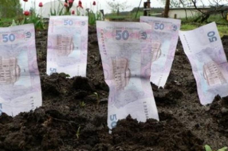 Аграрии получили 80 млн. грн. бюджетных дотаций за февраль