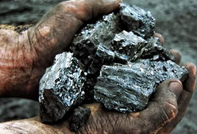 Городское управление образования закупило угля почти на 1,6 миллиона гривен