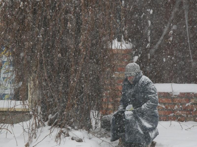 Городская власть Николаева предлагает гражданам взять лопаты