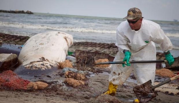 По $4,3 тысячи за баррель: штраф BP за разлив нефти в Мексиканском заливе составит $13,7 млрд