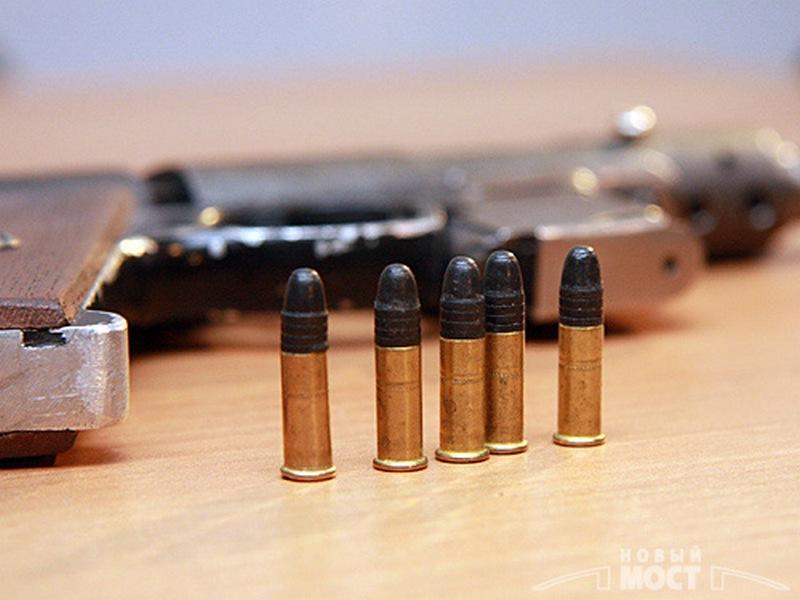 «Я – маленькая лошадка»: в автомобиле жителя Корабельного района нашли немножко патронов калибра 5,6