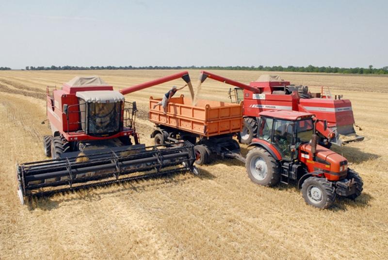 Украина экспортировала около 25 млн. тонн зерна