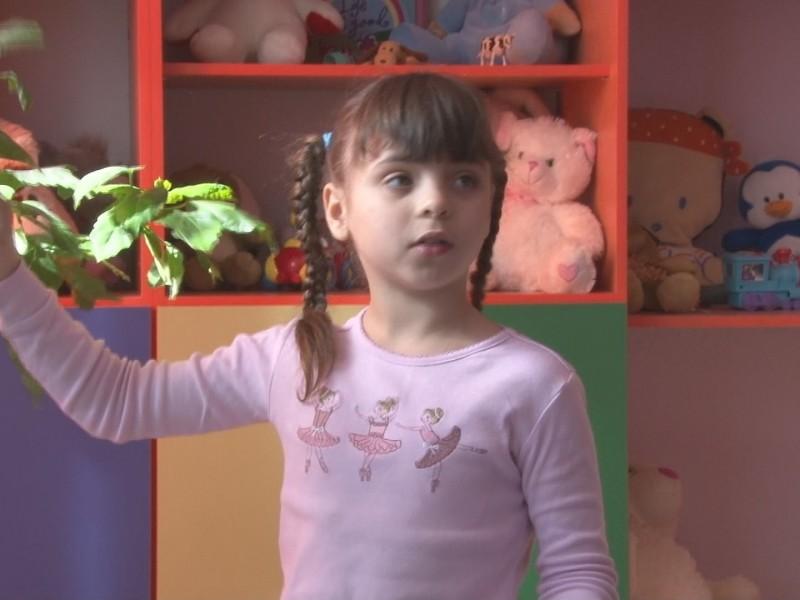 В Николаеве 4 детских дома хотят разместить на одной территории. Но кажется, на эту землю есть и другие желающие