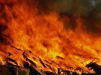 В Кривой Балке сгорел сарай с домашней птицей
