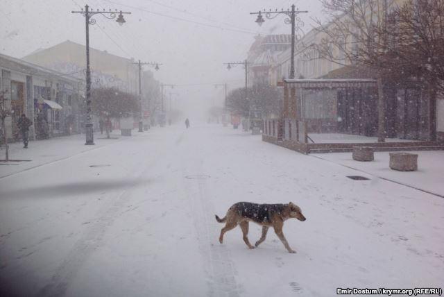 С наступающим! На весенний Симферополь обрушился снегопад