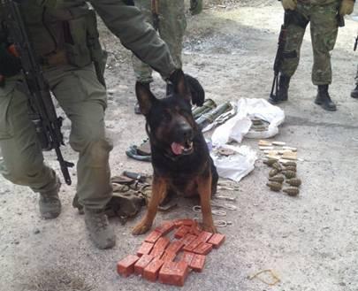 СБУ обезвредила тайник террористов с шестью килограммами тротила