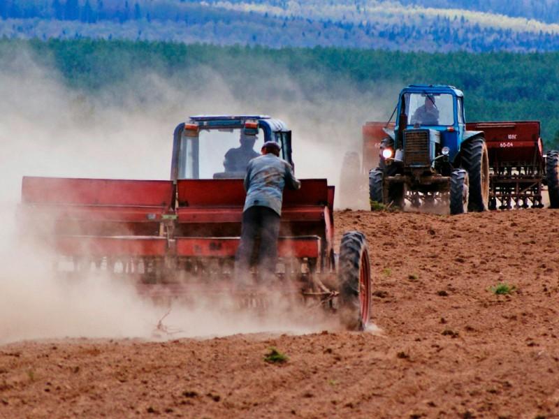 В Очаковском районе возвращают государству 160,5 га прибрежной земли