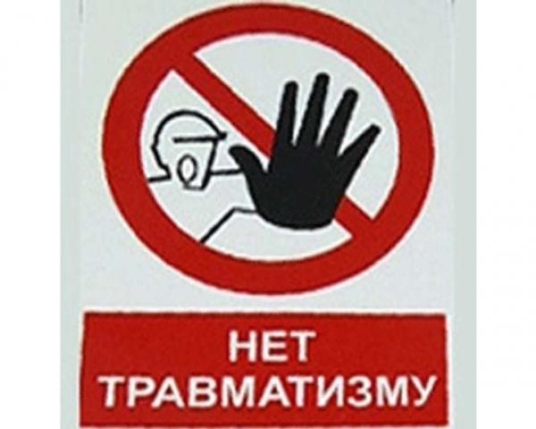 За игнорирование правил безопасности при обрезке деревьев главному инженеру Первомайского водоканала грозит срок до 8 лет тюрьмы