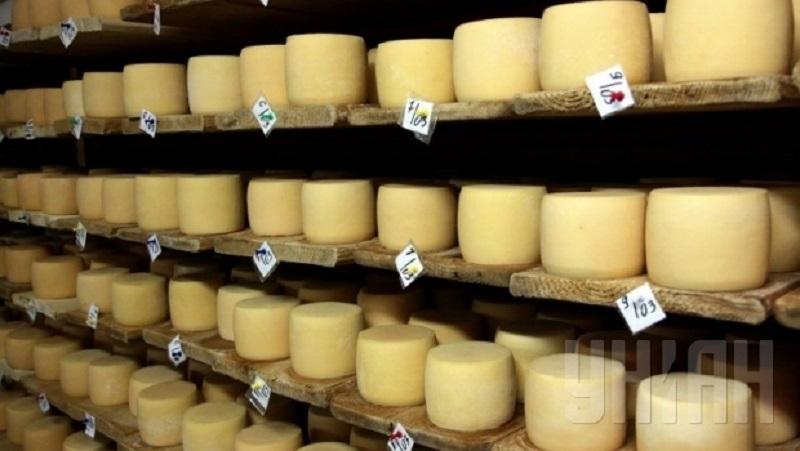 Дожили. Импорт сыров в Украину впервые превысил экспорт
