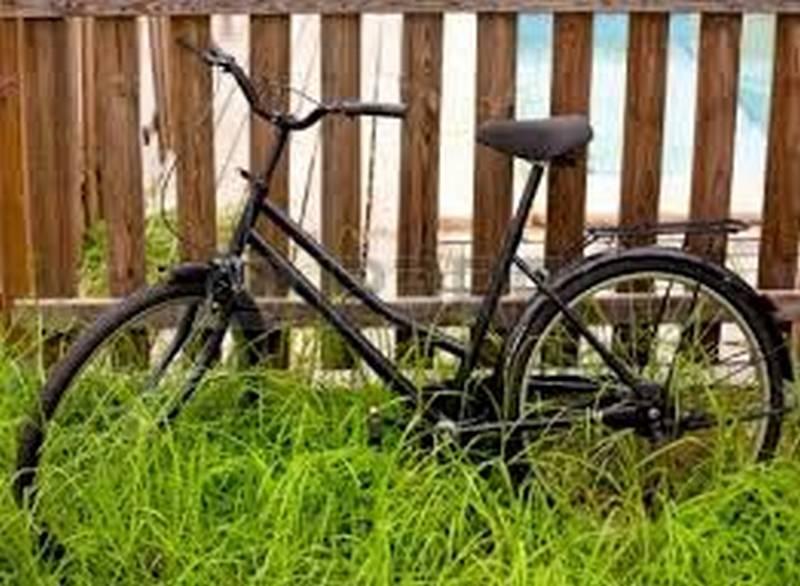 В Запорожье задержали жителя Николаевской области, который угнал со двора чужой велосипед