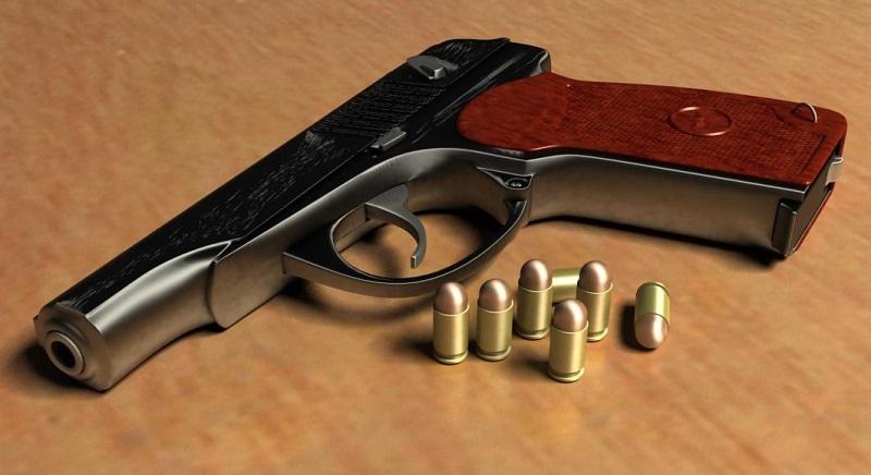 В Николаеве полицейские изъяли оружие и боеприпасы во время обыска, санкционированного судом