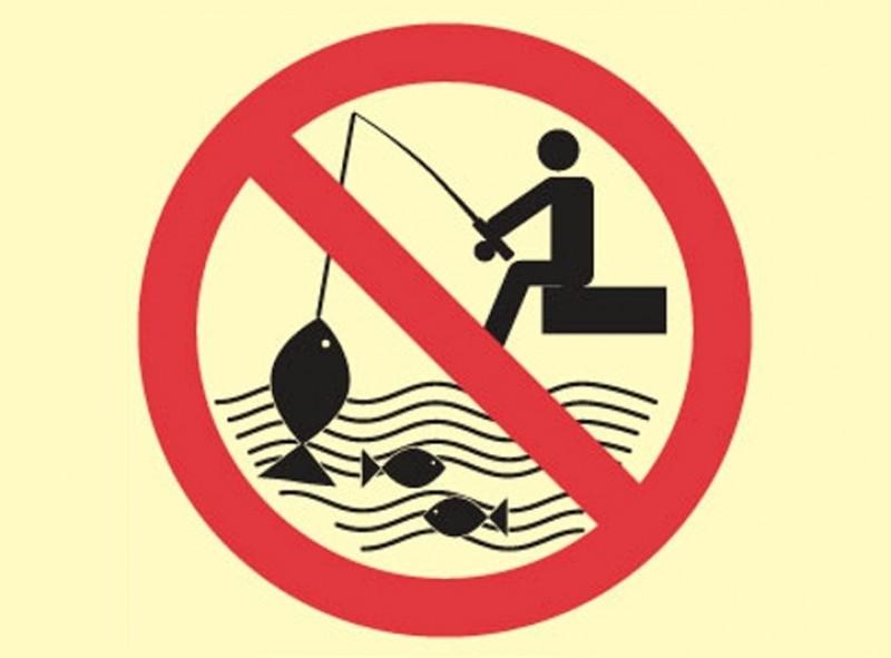 С сегодняшнего дня на водоемах Николаевщины действует запрет на вылов рыбы на зимовальных ямах