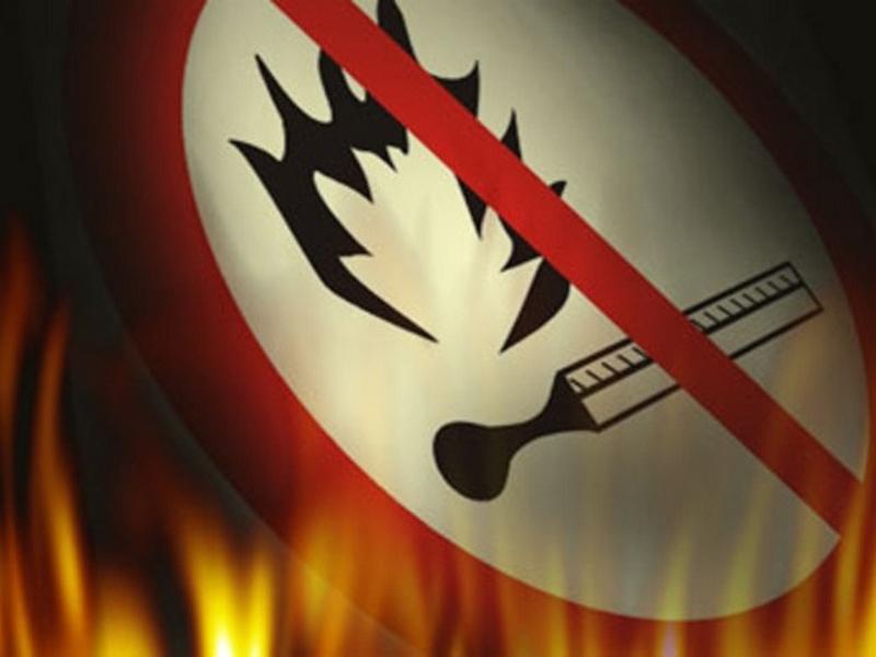На Николаевщине неизвестные сожгли 1500 кв.м камыша (ФОТО)