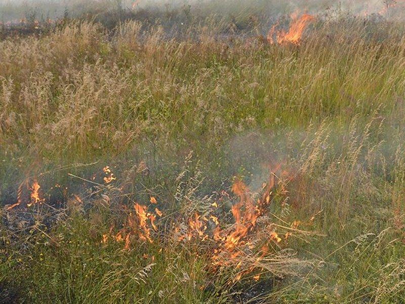 На территории Николаевские области за неделю – 47 пожаров на открытой территории