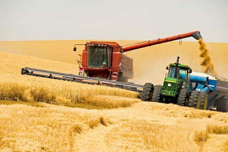 В Николаевской области медленно убирают урожай