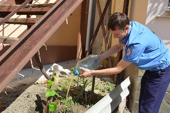 Притончики не гонят самогончик: в Центральном районе Николаева 55 литров самогона вылили в цветы
