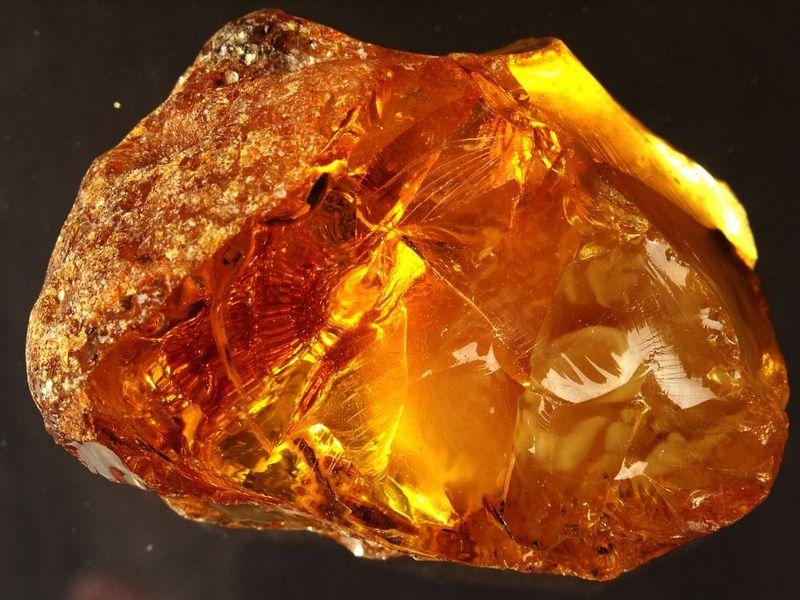 В Житомирской области изъяли полтонны незаконно добытого янтаря