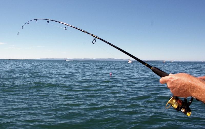В американском городе Сент-Огастин пьяная девушка клюнула на удочку рыбака