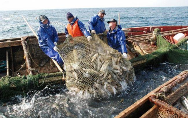 Вылов рыбы в Украине за 11 месяцев упал на 12,4%