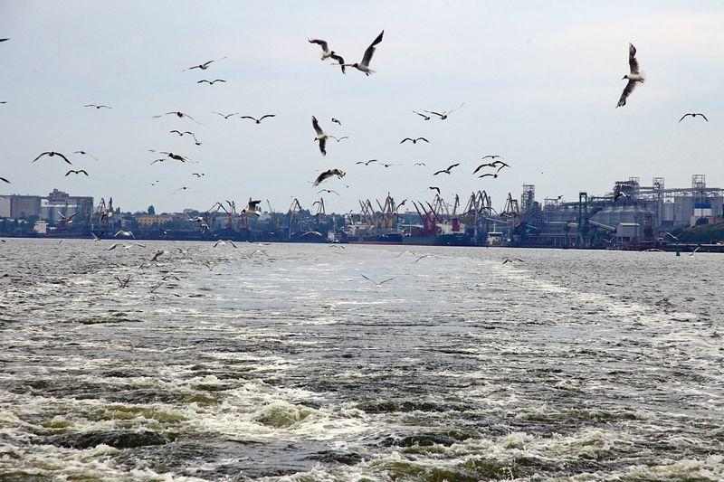 Порты Николаева и БДЛК уже работают в штатном режиме