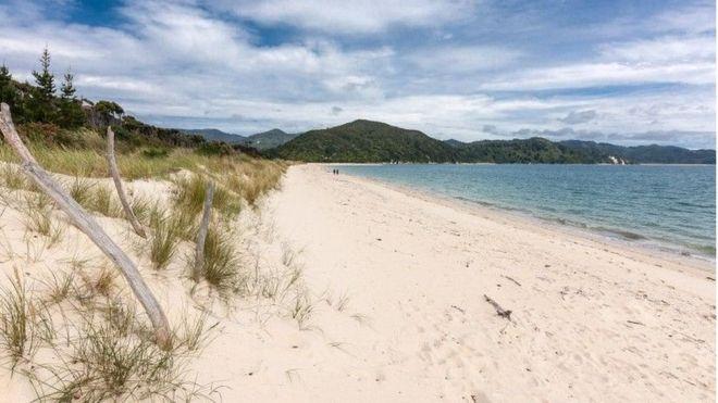 В Николаеве и области промониторили воду на пляжах: кое-где зашкаливает индекс ЛКП, а где-то — химические показатели