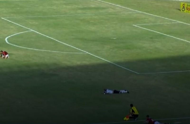 В Бразилии дикие пчелы прервали футбольный матч