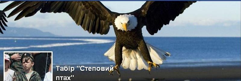 «Степовий птах»: в Николаеве летом откроется спортивно-патриотический лагерь для мальчишек