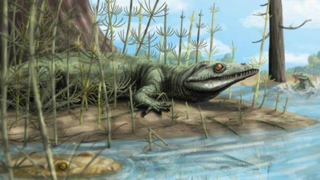 Ученые обнаружили в Бразилии останки неизвестного предка динозавров