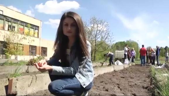 """""""Живое пространство"""". Как в городе организовать общественный огород. Опыт киевлян"""