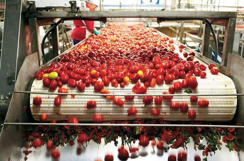 Agrofusion не будет строить завод в Херсонской области — из-за крымского «Титана»