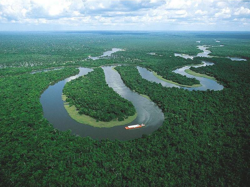В Амазонских лесах обнаружено неизвестное дикое племя