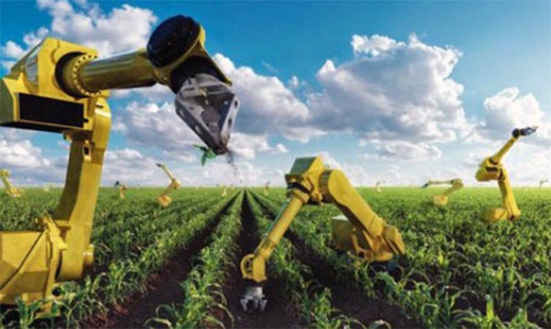 Выжигает сорняки лазерами: инженеры создали сельскохозяйственного робота (ВИДЕО)