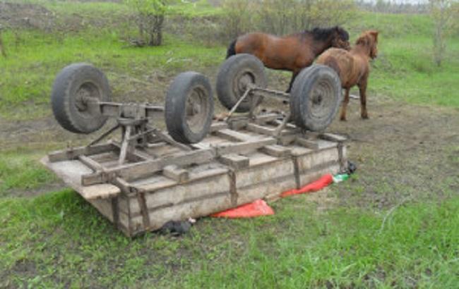В Житомирской области перевернулась гужевая повозка: 3 погибших, 1 ранен