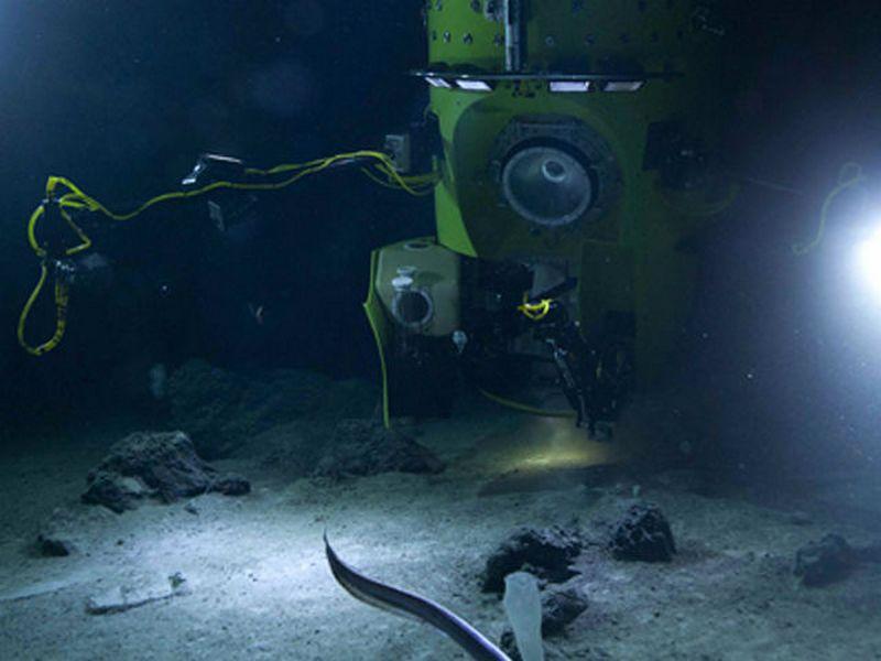 Океанологи показывают происходящее в самом глубоком месте Земли в режиме онлайн
