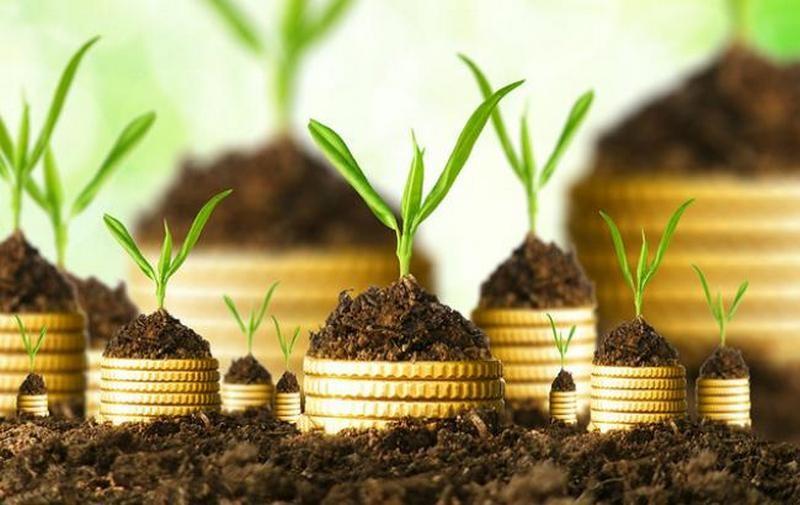 Где брать инвестиции? Украинские топ-чиновники рассказали о перспективах инвестирования в страну