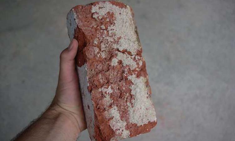 Ученые предложили технологию создания марсианского бетона из крови, пота и слез космонавтов
