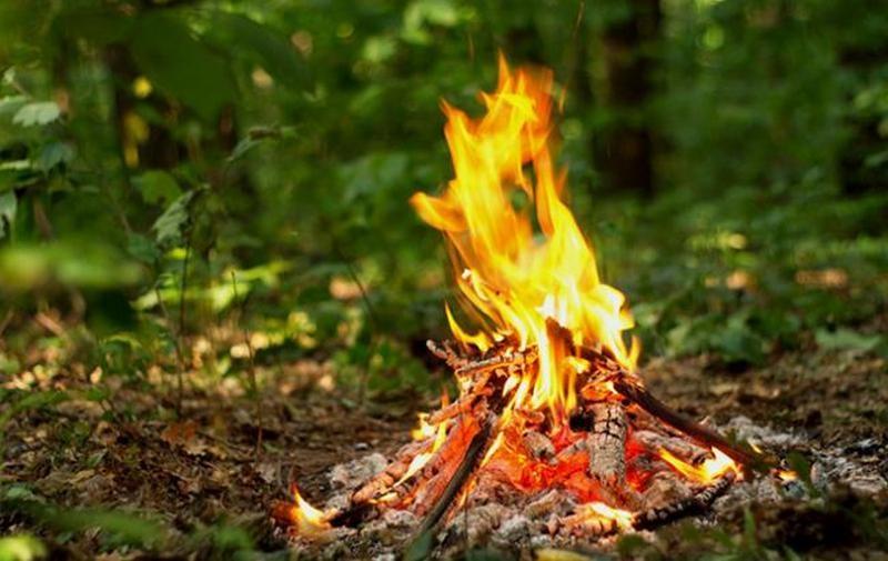 В ГСЧС предупредили: в ближайшие дни в Николаевской области будет преобладать высокая пожарная опасность