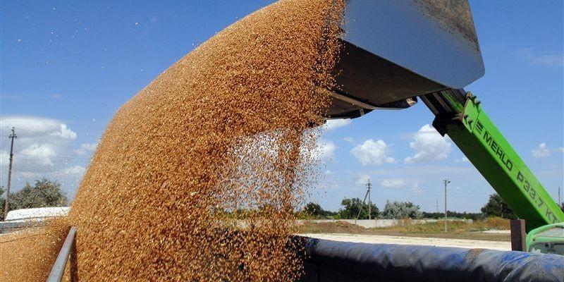 На 13% больше предыдущего сезона: Украина установила рекорд по экспорту зерна