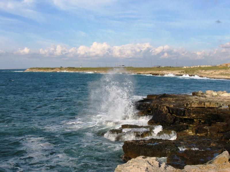 В Коблево чиновники бесплатно раздали еще 1 гектар побережья Черного моря под дачи