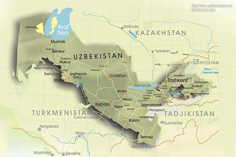 В Узбекистане назначили врио президента