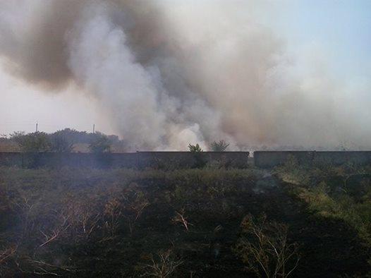 Снова горит трава: в Николаевской области огонь за трое суток «прошел» 33 га