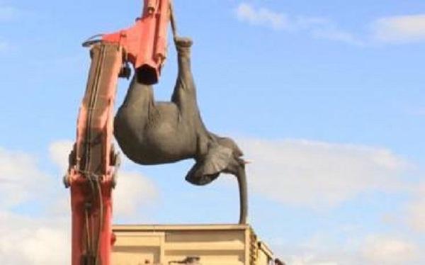 Великое переселение. Как перевозили 500 слонов!