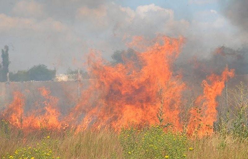 Николаевщина горит то тут, то там: 20 возгораний за сутки