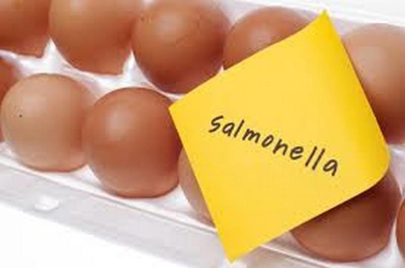 В Новобугском районе зарегистрирован 1 случай заболевания сальмонеллезом