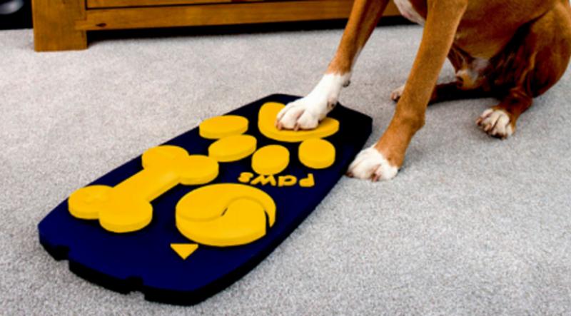 В Великобритании разработали ТВ-пульт для собак